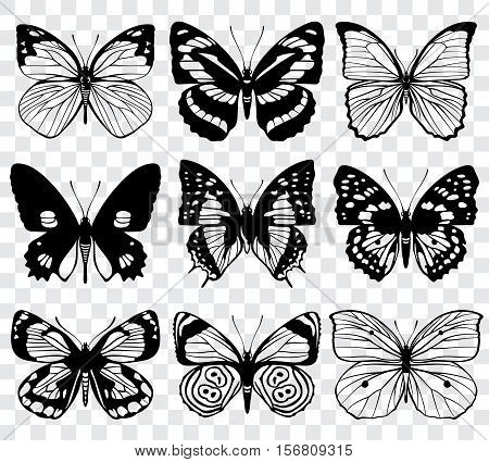 Butterfly silhouettes vector macro collection. Set of butterfly set, illustration of black silhouette butterflies
