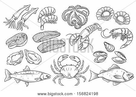 Hand drawn Seafood set. Decorative icons Squid, Octopus, salmon, oysters, scallops, lobster, red perch , crab, shellfish and mussels. Vector illustration in old ink style