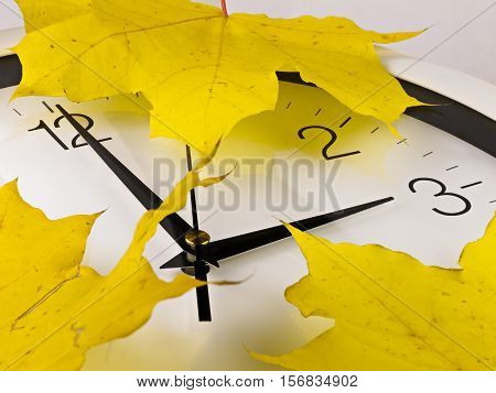 Fall back, winter time. Daylight Saving Time. The fall back is done in autumn. When local daylight time is about to reach two AM clocks are turned backward one hour to one AM local standard time instead. There will be more light in the morning.