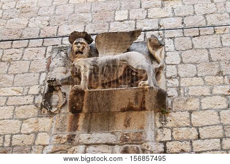 Statute of lion in Hvar in Croatia