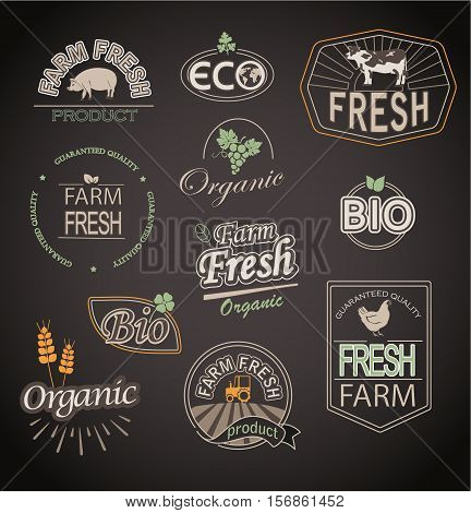 Set of badges and labels elements for organic and farm fresh food.