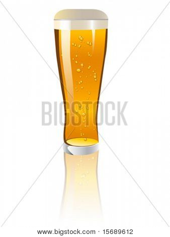 Detailed vector illustration of a glass of beer