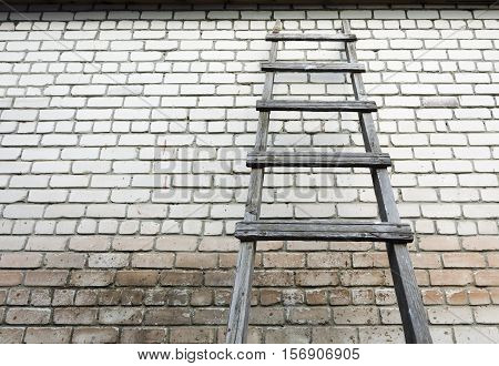 Ladder staircase step up on wall background