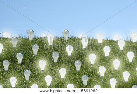 Lighbulbs growing on a field - Renewable Energy