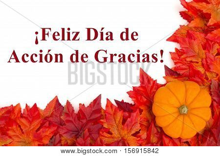 Happy Thanksgiving greeting in Spanish Some fall leaves and a pumpkin with text Feliz Dia de Accion de Gracias