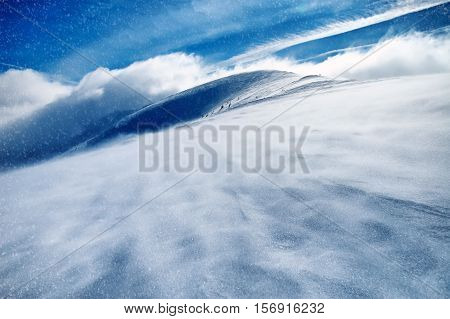 The Amazing winter landscape with snow covered trees and snowstorm