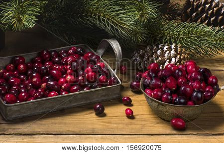 fresh picked organic cranberries for Christmas on a rustic table