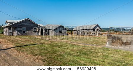A view of an old gray farm house in Auburn Washington.