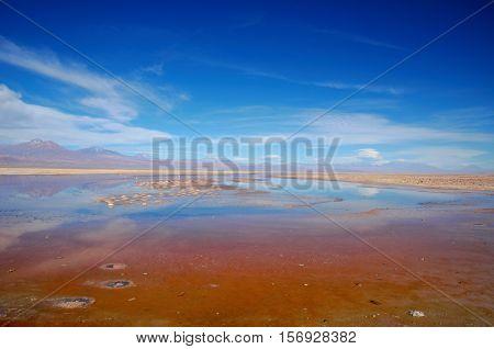 Panoramic view of the Laguna Chaxa a lagoon with flamingos in the National reserve Los Flamencos close to San Pedro de Atacama in the Atacama desert in Chile South America