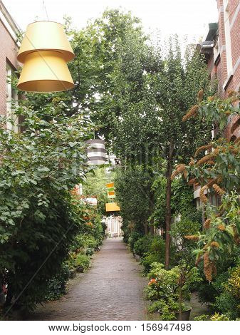 Alley with greenery and lampshades over the lights