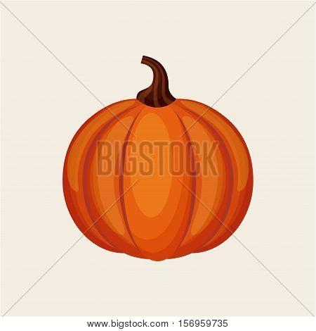 orange pumpkin icon over white background. colorful design. vector illustration