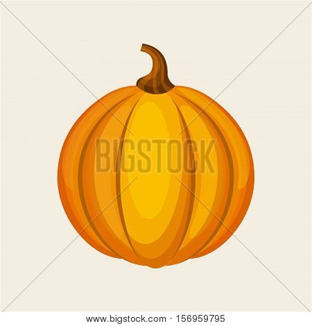 yellow pumpkin icon over white background. colorful design. vector illustration