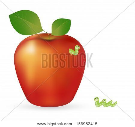 apple and worm on a white background