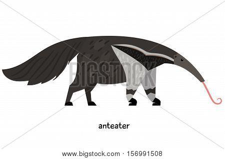 Strange animal anteater with narrow muzzle and lush tail