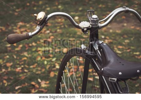 Detail of a penny farthing bicycle in a park with fallen autumn leaves