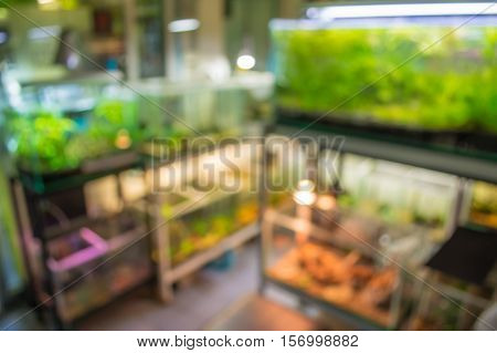 Blur Image Of Aquarium Shop.