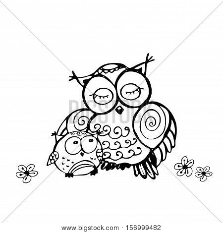 Mother Owl And Owlet, Isolated On White Background