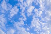 Background with clouds in the blue sky. Texture atmospheric sky high. Feathery white clouds. poster