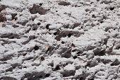 Close up of pumice stones at Campo de Piedra Pomez, near Fiambala, Catamarca, Argentina poster