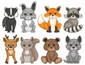 Cute forest animals isolated on a white background. Set of cartoon woodland animals. Set of prints for t-shirt design. Vector illustration. poster