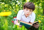 preteen handsome keen boy red and old book in the summer park with dandelion flowers poster