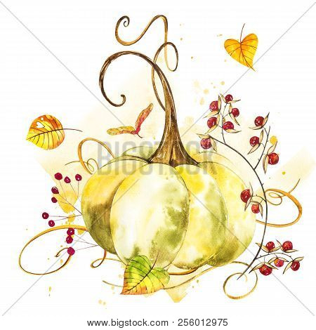 Pumpkin. Hand Drawn Watercolor Painting On White Background. Watercolor Illustration With A Splash.