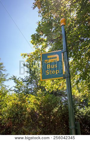 Country bus stop. Rural sign post painted yellow and green with the picture of a bus. Quirky countryside bus stop. poster