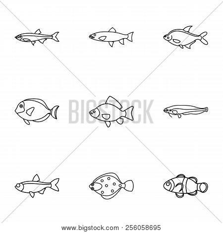 Species Of Fish Icons Set. Outline Illustration Of 9 Species Of Fish Icons For Web