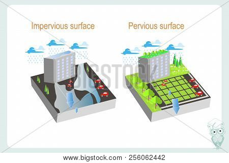 Precipitation In The City Depending On The Permeability Of The Substrate. Impervious, Pervious Surfa
