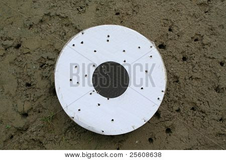 kyudo target with holes