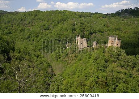 mediaval castle in forest france