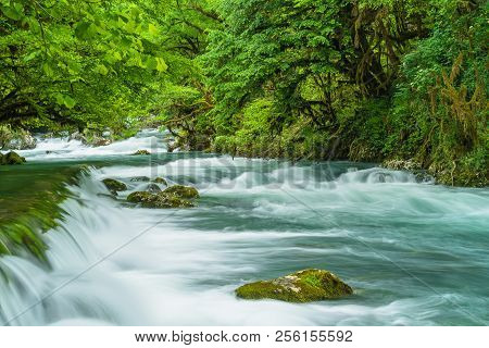 Mountain River Flowing Through The Green Forest. Rapid Flow Over Rock Covered With Moss