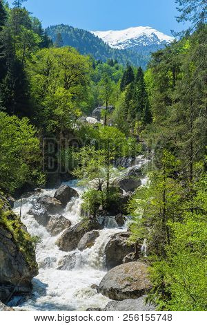 Mountain River With Waterfall Flows In Green Forest. Caucasus Mountains Spring Landscape.