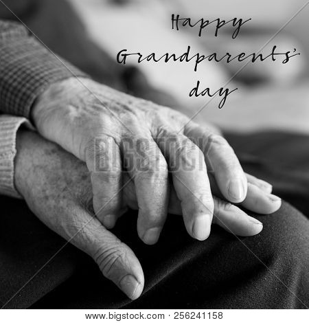 closeup of an old caucasian man and an old caucasian woman sitting in a couch holding hands with affection, and the text happy grandparents day
