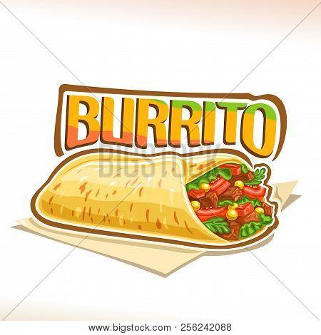 Vector Poster For Mexican Burrito, Tortilla Stuffed Shredded Carnitas And Fresh Cilantro On Napkin,