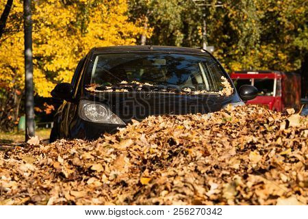 The Car Is Parked In A Pile Of Autumn Leaves