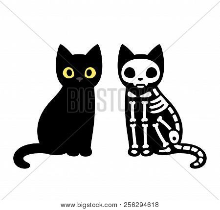 Cartoon Cat Skeleton