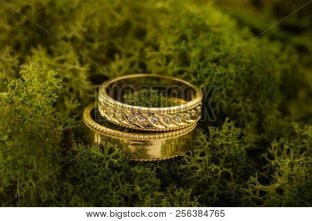 Two Gold Wedding Rings With Diamond On Green Moss. Yellow Gold Rings For Bride And Groom On Nature B