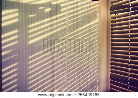 The Shadow From Jalousie On The White Wall
