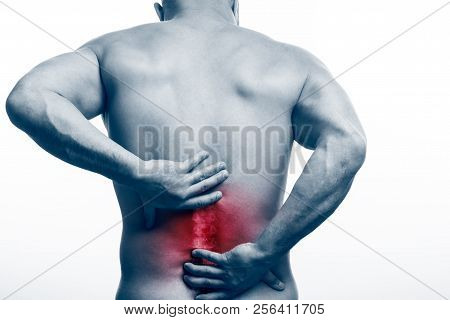Injury Of The Spine. Young Bald Man Sports Physique Holds A Sick Back On A White Isolated Background