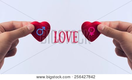 Red Heart In Hand, The Concept Of Medicine Or Love