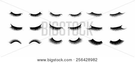 Eyelash Extension Set. Beautiful Black Long Eyelashes. Closed Eye . False Beauty Cilia. Mascara Natu