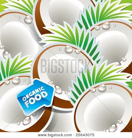 Background from coconut with the arrow by organic food. Vector illustration.