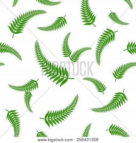 Vector Illustration Of Green Fern Leaves Seamless Pattern, Which Is A Traditional National Symbol Of