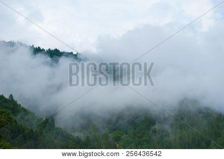 Clouds On The Woods Of The Mountains After Rain In A Damp Day