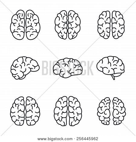 Brain Mind Icon Set. Outline Set Of Brain Mind Vector Icons For Web Design Isolated On White Backgro