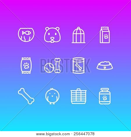 Vector Illustration Of 12 Pet Icons Line Style. Editable Set Of Kibble, Bone, Fishbowl And Other Ico