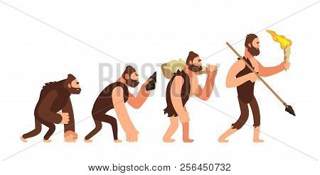 Theory Of Human Evolution. Man Development Stages. Anthropology Vector Illustration. Evolution Human