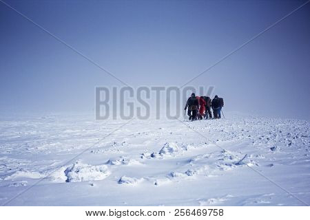 Group Of Tourists Going Up To Elbrus Top