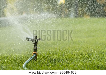 Garden Irrigation System Watering Lawn. Watering The Lawn In The Hot Summer. Lawn Sprinkler Spaying